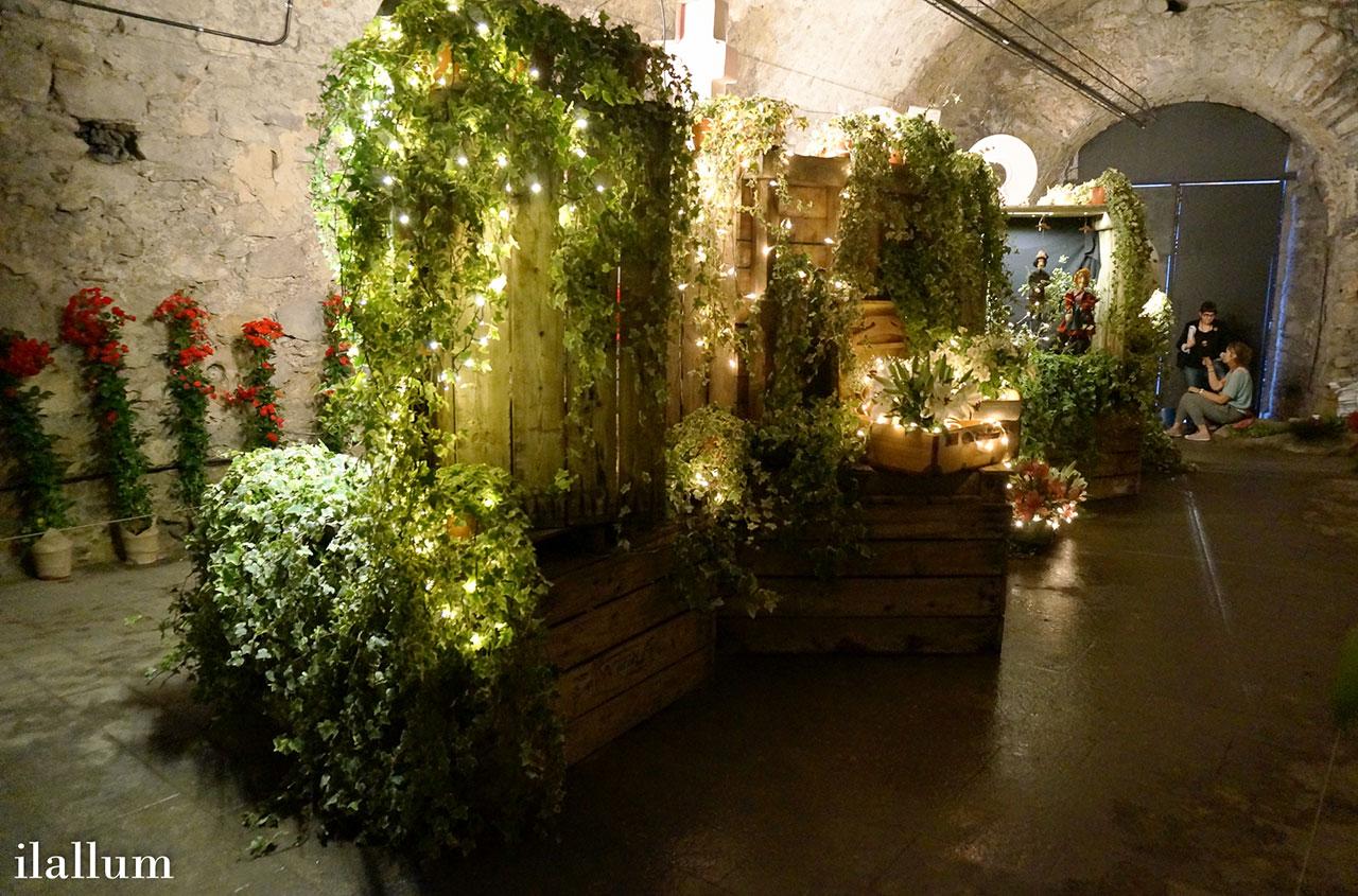 flores, plantas, iluminación y marionetas